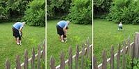 Oğluna Golf Oynamayı Öğretmeye Çalışan Baba ve Ufaklığın Muhteşem Tepkisi