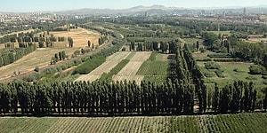 Milli Savunma Bakanlığı'na Kiralandı: Atatürk Orman Çiftliği'nde 250 Bin Metrekarelik Alan Yapılaşmaya Açılıyor