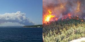 Gelibolu Yarımadası'nda Orman Yangını: '300 Hektara Yakın Bir Alanı Kaybetmişiz Gibi Görünüyor'
