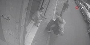 Gördüğü İlk Yere Sığındı: Sevgilisini Kovalayan Kişi, Kick Boks Antrenörü Tarafından Etkisiz Hale Getirildi