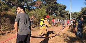 İstanbul Heybeliada'da Ormanlık Alanda Yangın Çıktı