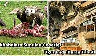 """Ölü Bedenler Akbabalara Ziyafet Çektiriyor: Dünyanın Farklı Yerlerindeki Birbirinden """"Tuhaf"""" Cenaze Ritüelleri"""