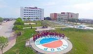 Sinop Üniversitesi Taban Puanları ve Başarı Sıralaması