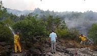 Orman Genel Müdürlüğü: 'Lice'deki Yangına Yerinde ve Zamanında Müdahale Edidi'