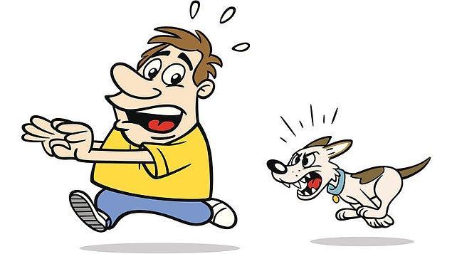 5. Kinofobi - Köpekten korkma hastalığı