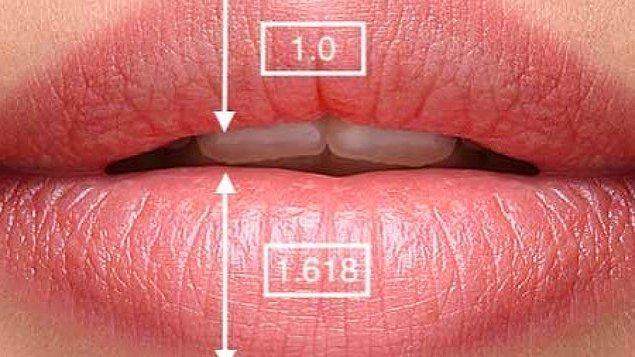 Ameliyat esnasında burnun alt kısmından bir kesi açılıyor ve aşırı (yani istenmeyen deri) burun altından çıkarılıyor; dudak şekillendirilerek üste doğru çekiliyor.