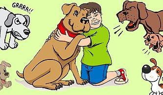 Onların da Size Söylemek İstedikleri Var! Köpeklerin Kendini İfade Ederken Kullandığı Beden Dili Hareketleri
