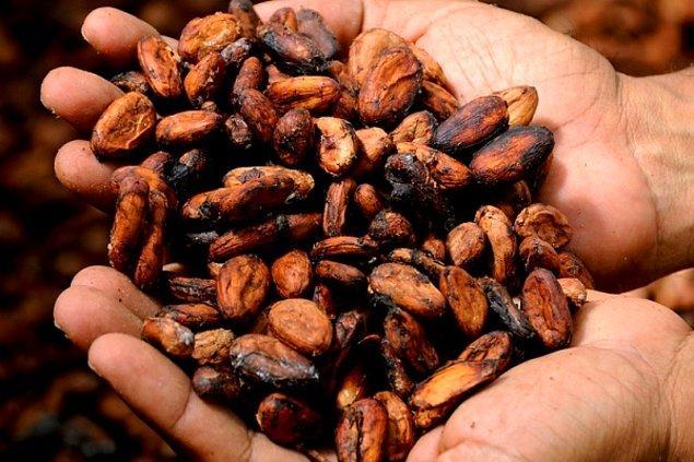 3. Kakao çekirdekleri, Orta Amerika'da ilk kez Mayalar tarafından yiyecek veya giyim gibi şeyler karşılığında takas malzemesi olarak kullanılan para birimi biçimiydi.