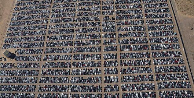 Tüm araçlar Volkswagen'in emisyon skandalından sonra trafikten çekilen araçlar.