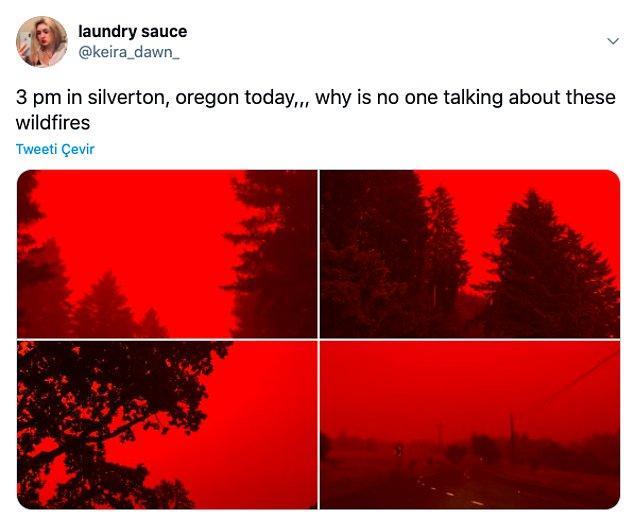 """10. """"Silveryon, Oregon'da saat 3. Neden kimse bu yangından bahsetmiyor."""""""