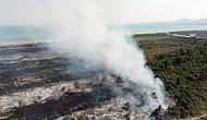 Nisan'da Statüsü Değişiyor, Eylül'de Yangın Çıkıyor: UNESCO Listesindeki Kızılırmak Deltası Yangınında Kundaklama Şüphesi