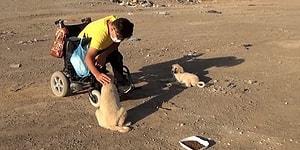 Akülü Aracıyla Her Gün Sokak Hayvanlarını Besleyen Engelli Genç: 'Gücüm Yettiğince Elimden Geleni Yapıyorum'