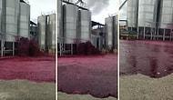 Şarap Fabrikasında Tankın Patlaması ile 50 Bin Litre Şarap Çevreye Yayıldı