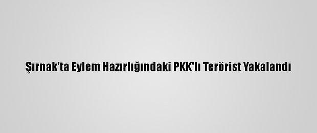 Şırnak'ta Eylem Hazırlığındaki PKK'lı Terörist Yakalandı