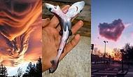 Gördüğünüzde Gerçekliğini Sorguladıktan Sonra Tekrar Tekrar Bakacağınız Birbirinden İlginç 23 Fotoğraf