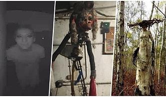 Aşağı İndikçe Korkunçluk Seviyesi Artarak Tüylerinizi Diken Diken Edecek 17 Ürpertici Fotoğraf