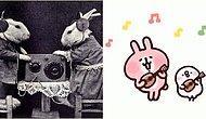 Sesil Aktürk Yazio: Beyaz Tavşanı İzle