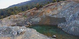 ÇED Olumsuz Raporuna Rağmen: Bilecik'te 36 Bin Ağacın Kesileceği Maden Projesine Onay Verildi