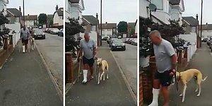 Topallayan Köpeği İçin 300 Pound Veteriner Parası Harcayan Adam, Köpeğin Kendisini Taklit Ettiğini Öğrendi