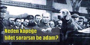 Atatürk'ün Evlat Edindiği ve Kayıpları Karşısında Adeta Sarsıldığı Üç Köpek: Alp, Alber ve Fox