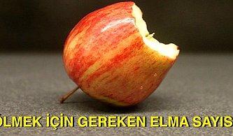 Dandik Efsane ya da Hayati Risk: Elmayı Çekirdekleriyle Yemek Bizi Zehirleyip Öldürüyor mu?