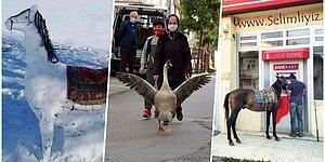 Her Yönüyle Bizi Şaşırtmaya Devam Eden Kars'ta Günlük Hayatta Karşılacağınız Birbirinden İlginç 23 Manzara