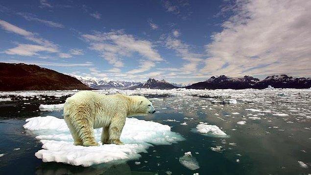 Sekizinci gün gündem iklim değişikliği...
