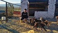 Hasret Kaldığımız Haberler: Felçli Köpeğe Su Borusundan 'Yürüteç' Yaptı