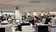Doğayı Çalışırken Koruyabiliriz! Ofis Çalışanlarının Çevreyi Koruma Adına Bireysel Olarak Yapabileceği 9 Şey