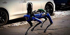 New York'ta Polis, Robot Köpeklerden Faydalanmaya Başladı