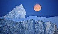 Antarktika'da 1270 Kilometrekarelik Buz Kütlesi Koptu