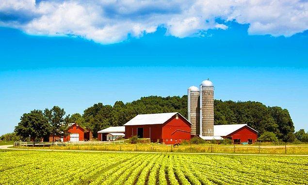 Times tarımın karbon emisyonlarına etkisi konusundaki rakamların tartışmalı olduğunu, ancak genel olarak yüzde 10'unu ürettiğine inanıldığını belirtiyor.