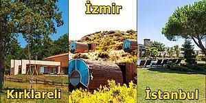 Türkiye'de Sürdürülebilir Yaşamı Mümkün Kılan 10 Ekolojik Yaşam Çiftliği
