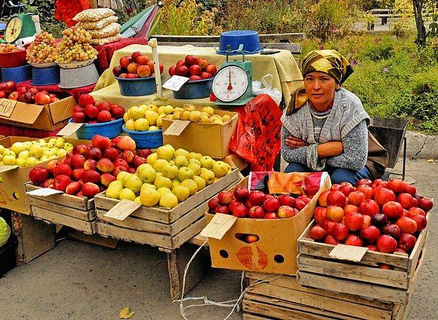 7. Yeryüzündeki ilk elmanın Kazakistan'ın eski başkenti Almatı'da ortaya çıktığına inanılıyor.