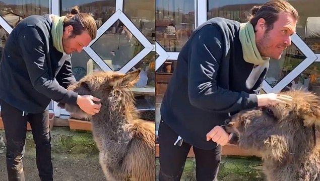 14. Kıvanç Tatlıtuğ ve Başak Dizer çifti geçtiğimiz gün Arzu adındaki bu sıpayı ziyaret etti ve bu tatlı görüntüleri sosyal medya hesaplarında paylaştılar.