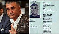 Sedat Peker'in Makedonya'da Sahte Evrakla İkamet Ettiği Ortaya Çıktı: 'Djadin Ademovski' İsmini Kullanmış