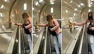 Kediler ve İstanbul: Şişhane Metrosunun Merdivenlerinin Kenarından Kayarak Sevimlilik Patlaması Yaşayan Kedi