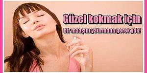 Bir Servet Harcamadan En İyi ve Pahalı Kokuları Üzerinizde Taşımanızı Sağlayacak 12 Muadil Parfüm