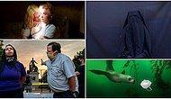 Yılın En İyi Basın Fotoğrafları Yarışmasında Kazananlar Belli Oldu
