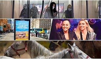 Bugün Neler Yaşandı? Yapay Virüs, Çipli Atlar, Hadise