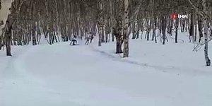 Kayak Yarışında Ağaca Çarpan Sporcu Hayatını Kaybetti