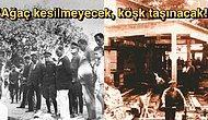 Biz Ormanları Katlederken Atatürk'ün Çınar Ağacının Bir Dalı İçin Köşkünü Raylarla Taşıtma Hikayesi!