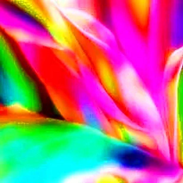 Neon / Canlı renkler