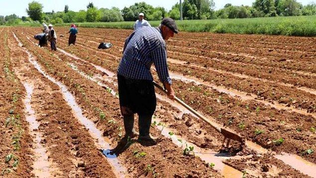 Çiftçi Belgesi Olan Yasaktan Muaf Mı?