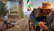 Suçun, Polisin ve İşsizliğin Olmadığı Dünyanın Tek Köyü; Marinaleda