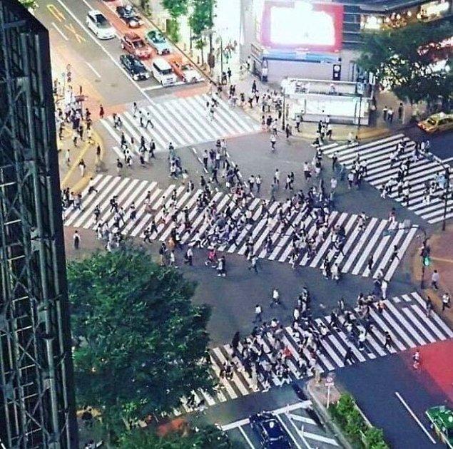 16. Japonya'da 300'den fazla yaya şeridi vardır.