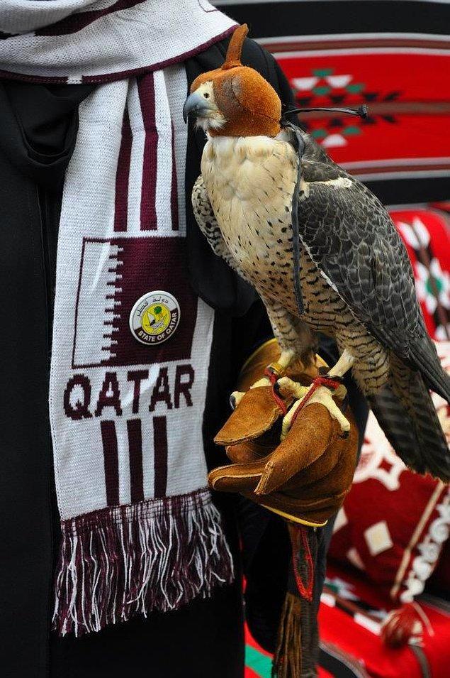 17. Pek çok Katarlı şahin beslemektedir ve bu oldukça yaygındır.