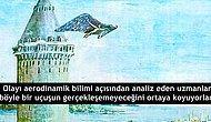Hezârfen Ahmed Çelebi Gerçekten Galata Kulesi'nden Karşı Yakaya Kadar Uçtu mu?