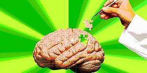 Korkut Ulucan Yazio: Acil Çözüm: Beyin Viagra'sı