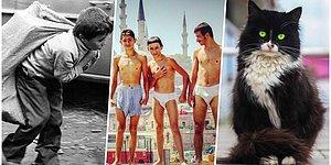 Çektikleri Her Kareyle Bizleri Büyülemeyi Başaran Türkiye'nin En Yetenekli Fotoğraf Sanatçıları